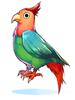 의상 수다쟁이 앵무새 이미지
