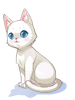 의상 흰 고양이 이미지