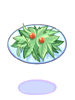 녹색의 샐러드 이미지