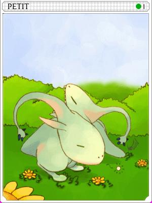 쁘띠 카드 이미지