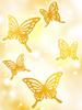의상 나비의 날갯짓 이미지