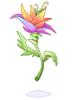 발할라의 꽃 이미지