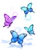 의상 나풀나풀 춤추는 나비 이미지